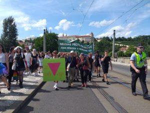 Předsedkyně LES Džamila Stehlíková ve svém projevu na Reclaim Pride upozornila na to, že někteří politici se budou před říjnovými sněmovními volbami snažit útočit na sexuální menšiny ve snaze rozdělovat společnost
