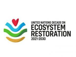OSN na Světový den životního prostředí vyzývá k obnově krajiny a ekosystémů