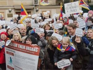 Liberálně ekologická strana nesouhlasí s politikou prezidenta a vlády vůči Tibetu a Číně a kritizuje porušování lidských práv